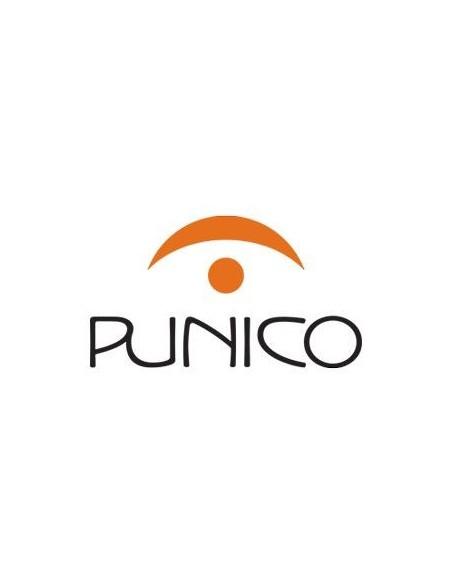 Malvasia Punico vino liquoroso 16% 75 cl